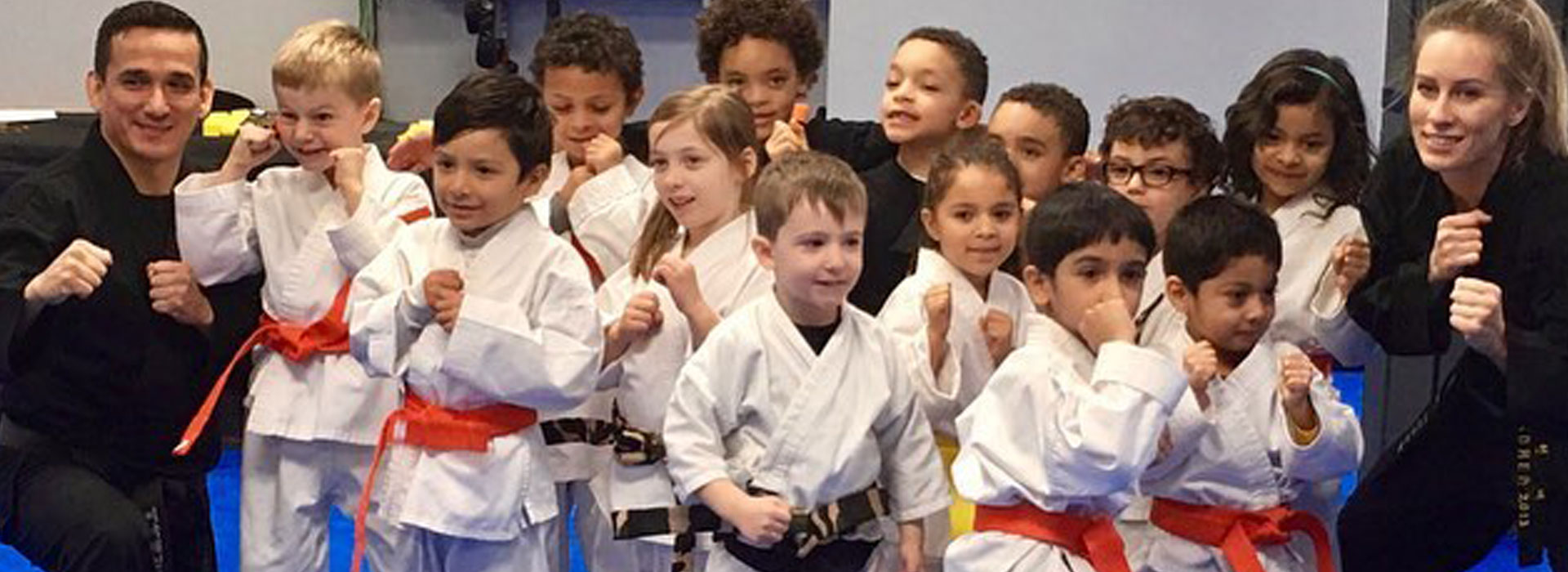 Top 5 Best Martial Arts Gyms to Join near Fairfax, VA close to Old Town Fairfax, Chantilly, Vienna, Fairfax, Great Falls, Providence Elementary School, Daniels Run Elementary School, Laurel Ridge Elementary School, Mosaic Elementary School, and the Mosaic District